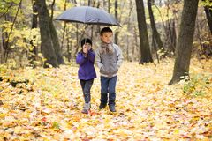Happy children playing in beautiful autumn park stock photos