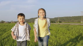 Two happy children playing in the field at the day time. Kid having fun outdoors. Concept of happy game stock video