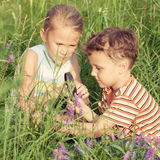 Two happy children  playing in park Royalty Free Stock Images