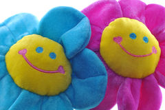 Two happy colorful flowers. Smiling together isolated on white Royalty Free Stock Images