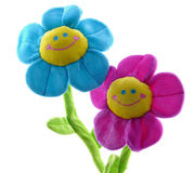 Two happy colorful flowers smiling together isolat. Ed on white Stock Photo