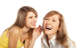 Two happy friends Stock Images