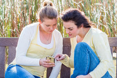 Two happy friends sitting on park bench talking and interacting. Stock Images