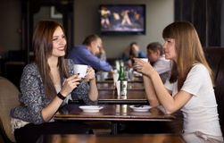 Two happy girlfriens talking in cafe Stock Photos