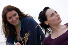 Two happy girls. Two girls, one looking up and away, another tickling her with a sprig Royalty Free Stock Images