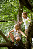 Two happy girls climbing up tree in summer park Royalty Free Stock Photos