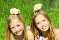 Little girls playing with chicks Stock Photo