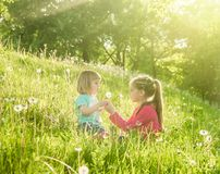 Two happy  little sisters on the field Royalty Free Stock Photos