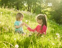Two happy  little sisters on the field Royalty Free Stock Photography