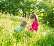 Two happy  little sisters on the field Stock Image