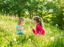 Two happy  little sisters on the field Royalty Free Stock Photo