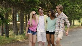 Two happy multiethnic couples enjoying life, laughing in park, summer holidays. Stock footage stock video