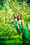 Two happy pretty girls sitting on the blossom apple tree Stock Photo
