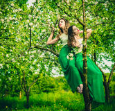 Two happy pretty girls sitting on the blossom apple tree Royalty Free Stock Photos