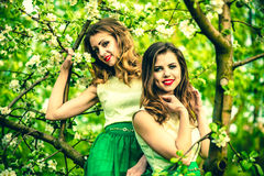 Two happy pretty girls sitting on the blossom apple tree Royalty Free Stock Photography