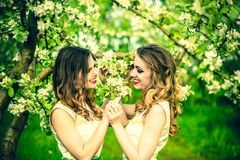 Two happy pretty girls staying under blossom apple tree Royalty Free Stock Photos
