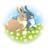 Two happy rabbits Royalty Free Stock Photo