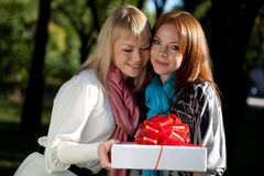 Two happy sisters with gift in the park Royalty Free Stock Photography