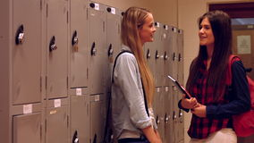 Two happy students chatting to each other. In a hallway stock video