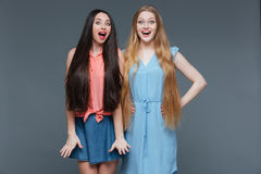 Two happy surprised young women with long hair Stock Photo