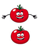 Two happy tomatoes illustration Stock Photo