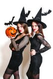 Two happy women in black witch halloween costumes with pumpkin on party over white background. Two happy sexy women in black witch halloween costumes with Royalty Free Stock Photos