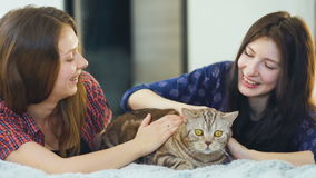 Two happy women friends lying in bed hug fat angry cat and have fun on bed stock video