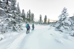Two happy women traveler with backpacks walking in winter forest Stock Image