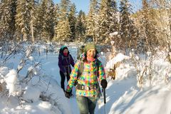 Two happy women traveler with backpacks walking in winter forest Royalty Free Stock Image