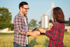 Two happy young female and male farmers or agronomists shaking hands in a wheat field royalty free stock image