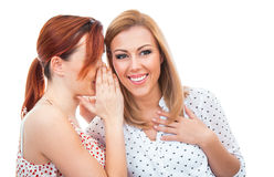 Two happy young girl friends talking or whispering royalty free stock images