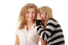 Two happy young girlfriends Stock Images