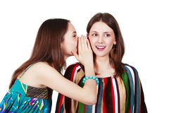 Two happy young girlfriends make gossip Stock Photography