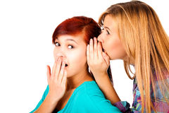 Two happy young girlfriends talking, gossip Royalty Free Stock Photo
