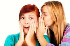Two happy young girlfriends talking, gossip Royalty Free Stock Images