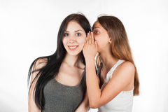 Two happy young girlfriends whisper talking, society gossip, rumor, rumour. On the background of white wall Stock Photo
