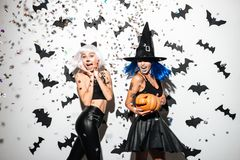 Two happy young women in leather halloween costumes. Posing with curved pumpkins over bats and confetti background Royalty Free Stock Photos