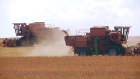 Two Harvesters. Two combine harvest head on against a background of yellow fields and sky. Heat. Day. Flying dust from the ground hay stock video