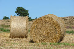 Two hay bales Royalty Free Stock Photos