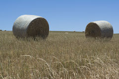 Two Hay Bales in a Field at Kings Beach, Fleurieu Peninsula, Sou Stock Images