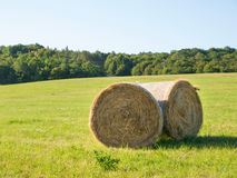 Two hay bales harvested on summer Stock Images