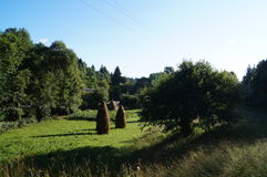 Two haystacks standing on the green grass. Near the trees Royalty Free Stock Photos