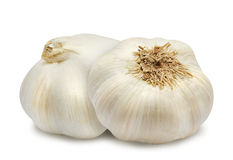 Two head of garlic. Royalty Free Stock Images