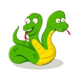 Two Headed Snake Stock Image