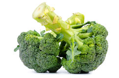 Two heads of fresh raw broccoli Royalty Free Stock Photography