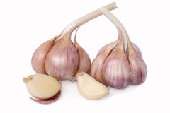 Two heads of garlic Royalty Free Stock Image