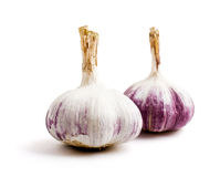 Two heads of ripe garlic on a white background. Two heads of ripe garlic isolated on a white background Royalty Free Stock Image