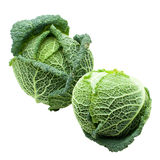 Two Heads of ripe Savoy cabbage isolated royalty free stock image