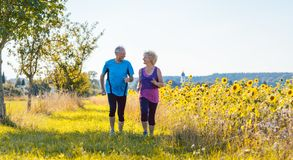 Two healthy senior people jogging on a country road in summer. Full length rear view of two healthy senior people jogging on a country road against clear blue stock image