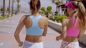 Two healthy young women jogging together. Two healthy toned young women in trendy sportswear jogging together along a coastal road  close up three-quarter rear stock video footage